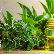 CBD Solution- Anxiety Issues Managed With Ease