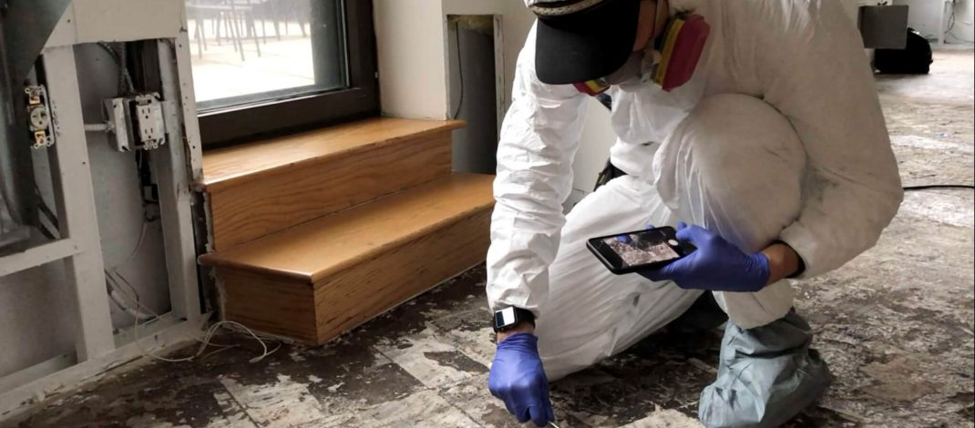All About Mold Inspection