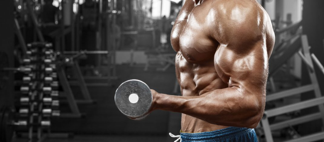 Build Muscle Mass Quick Without The Use Of Sports Supplements