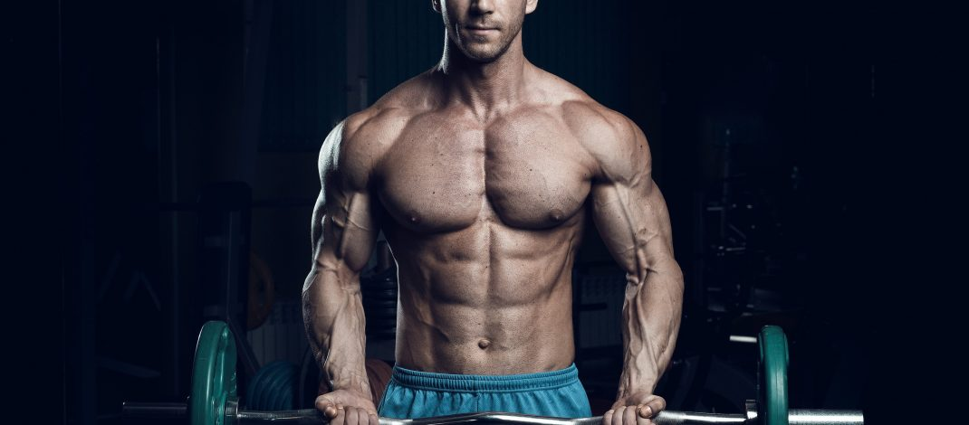 How To Build Muscle With Bodybuilding Exercises