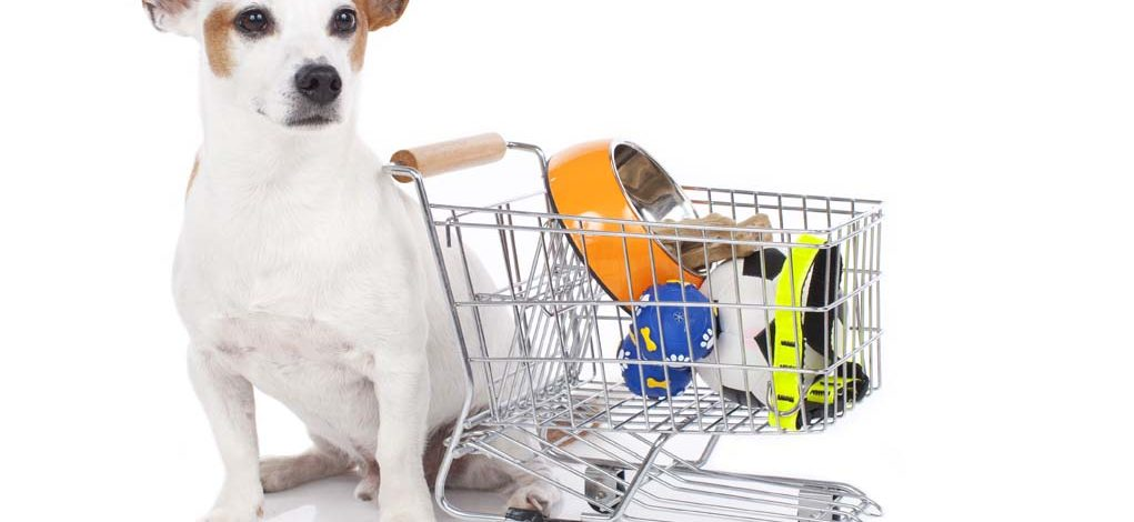 How To Save Money When Buying Pet Supplies