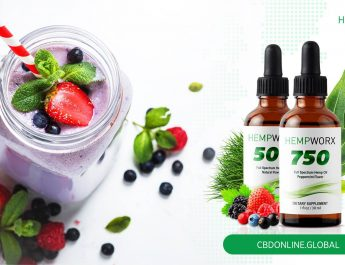 Premium Brands Of Cbd Oil Now Easily Available
