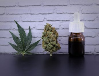 Learn The Basic Before Consuming CBD Oil UK